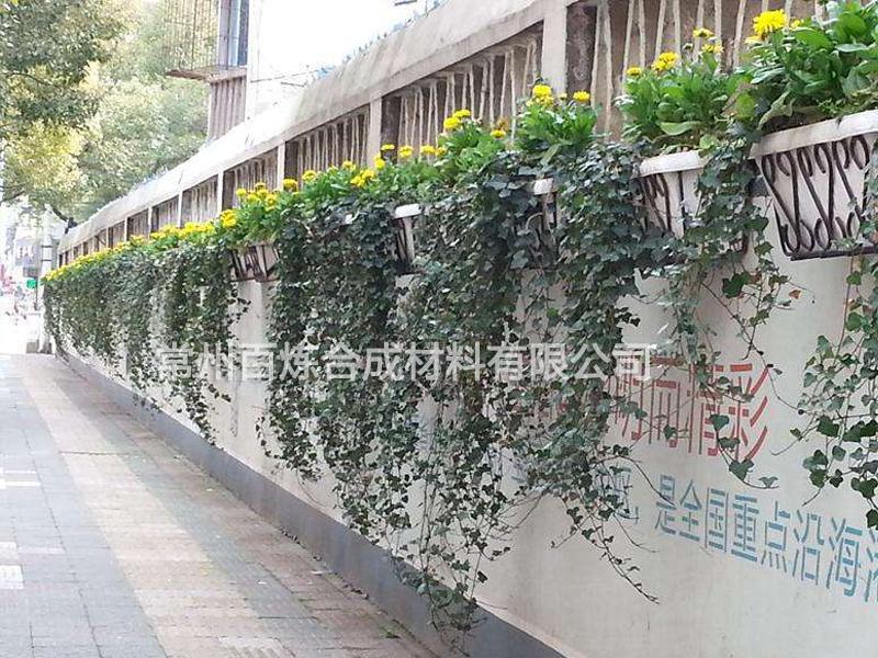 围墙绿化雷电竞官网地址